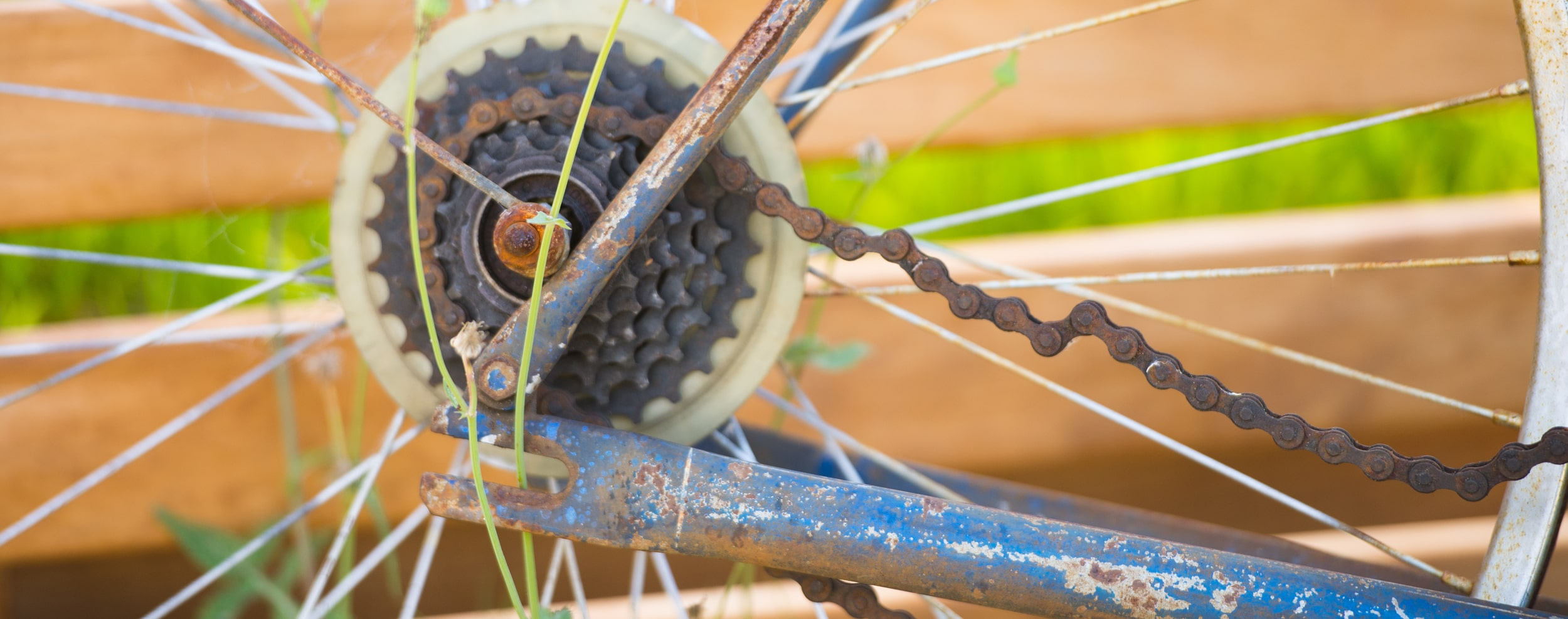 Bike-LP-min